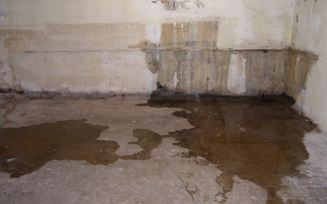 A Basic Guide to Dealing with Basement Water Damage